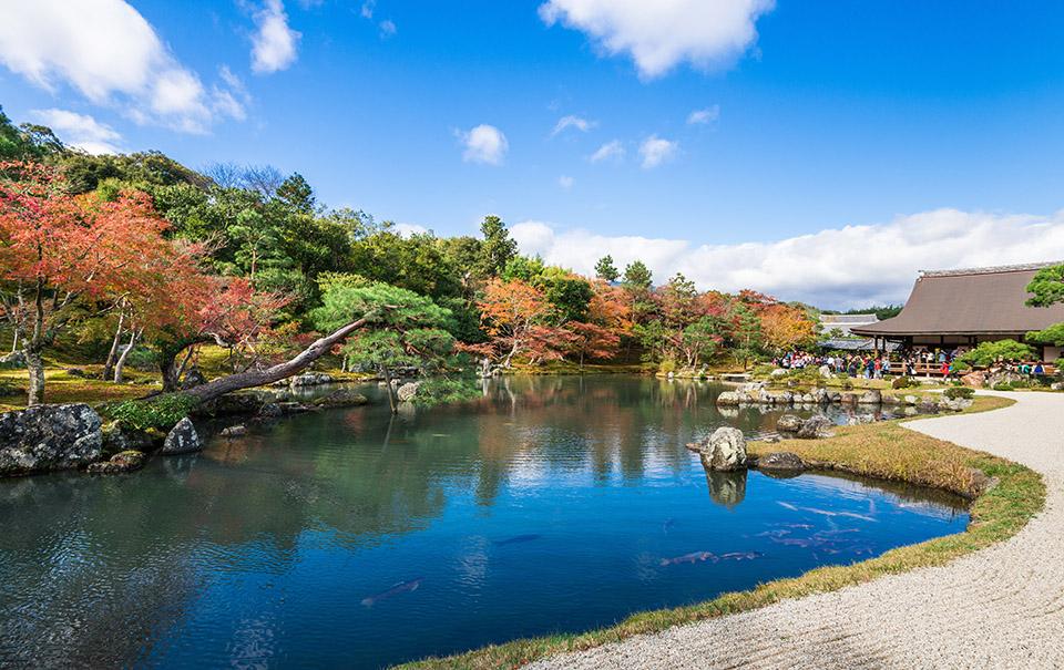 ちはやふる小倉山杯 嵯峨嵐山文華館周辺 亀山公園